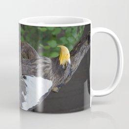 National Aviary - Pittsburgh - Stellers Sea Eagle 1 Coffee Mug