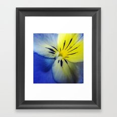 Flower Blue Yellow Framed Art Print