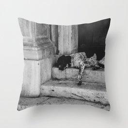 Sleeping dog Throw Pillow