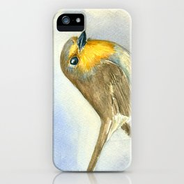 Robin bird on a frosted juniper branch iPhone Case