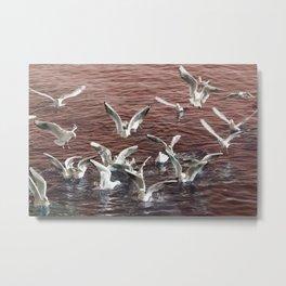 seagull flying at sea Metal Print