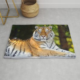 Impressively Noble Adult Tiger Looking At Camera Close Up Ultra HD Rug