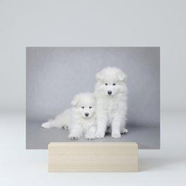 Samoyedu puppies 2 Mini Art Print