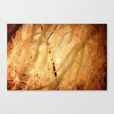 Winters Dark Path Canvas Print