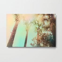 Afternoon at the Cape Metal Print
