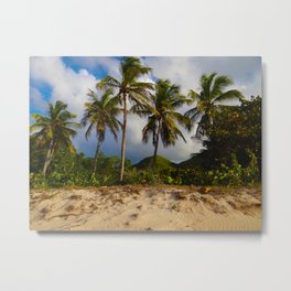 Island Living Metal Print