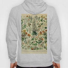 Adolphe Millot- Fleurs Vintage Illustration Hoody