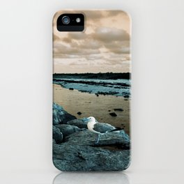 Barnegat Light 3 (seagull) iPhone Case