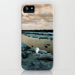Barnegat Light 3 (seagull) iPhone Case