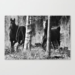 running Canvas Print