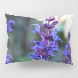 Salvia and Daisy Pillow Sham