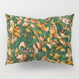 Red And Orange Autumn Leaves Background In Fall Season, Autumn Season, Fall Background, Falling Leaf Pillow Sham