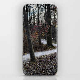 Stone Winding Path iPhone Skin