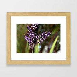 Botanical Dream of Spring Framed Art Print