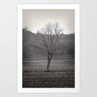 Winter Tree #2 Art Print