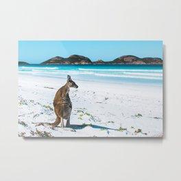 Kangaroo at the beach, Esperance Metal Print