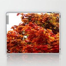 Autumn red tree Laptop & iPad Skin