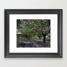 Blossoming Tree Framed Art Print