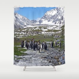 King Penguins, Snow and Glaciers Shower Curtain