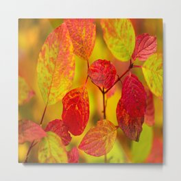 Red autumn leaves #decor #society6 Metal Print