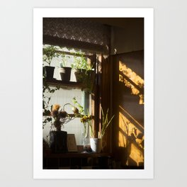 in the sun in the morning in the kitchen Art Print