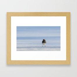 Lonely Junco In Snow Framed Art Print