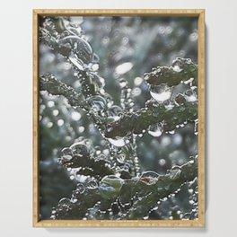 Dew Drops Serving Tray