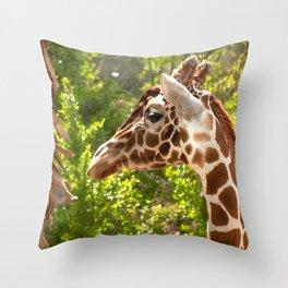 Giraffe Head Throw Pillow