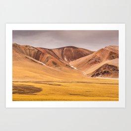 Atacama Desert Art Print