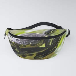 Watercolor Turtle, Eastern Painted Turtle 14, Rock Run, Florida, Stacked Fanny Pack