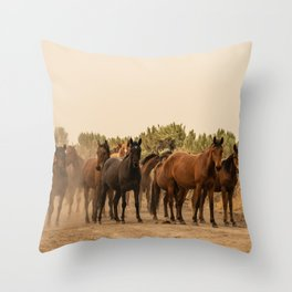 Wild Horses 6587 - Northwestern Nevada Throw Pillow