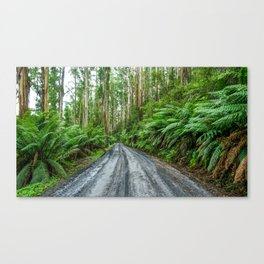 Mt Donna Buang, Warburton, Victoria Canvas Print