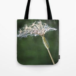 The Slow Journey Tote Bag