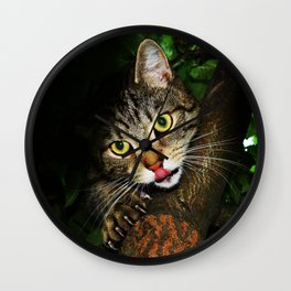 Cat licking nose hunting prey extending claws sitting on tree predator cat Wall Clock