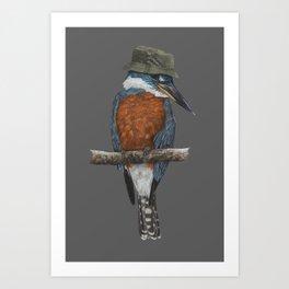Ringed kingfisher Art Print