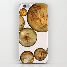 Wood Wood 2 iPhone & iPod Skin
