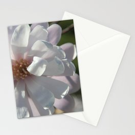 Star Magnoila II Stationery Cards