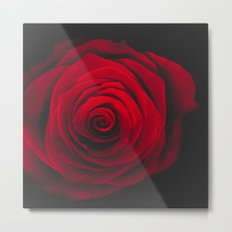 Red rose on black background vintage effect Metal Print