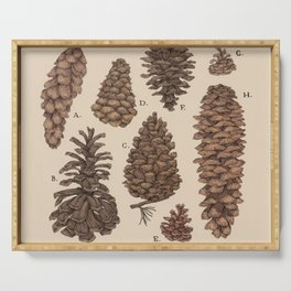 Pinecones Serving Tray
