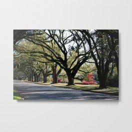 Oaks And Azaleas Metal Print