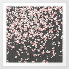 Black background Pink Shidare Zakura Art Print