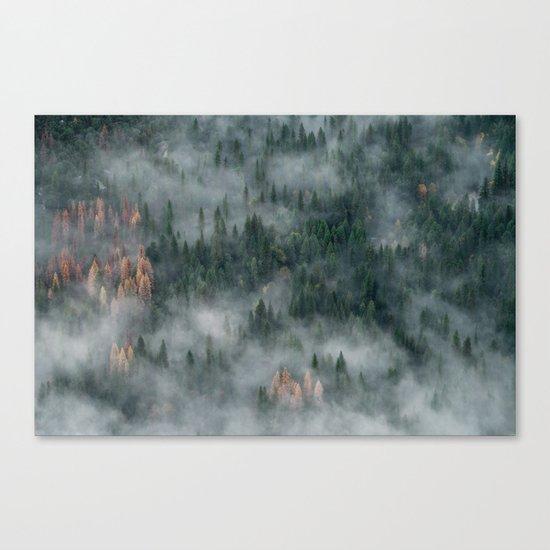 Woods landscape Canvas Print
