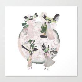 pink & plants - all Canvas Print