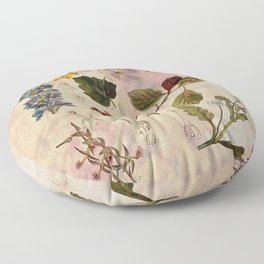 Botanical Study #1, Vintage Botanical Illustration Collage Floor Pillow