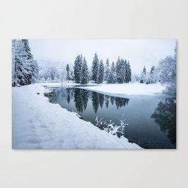 Dreamy Winterscape Canvas Print