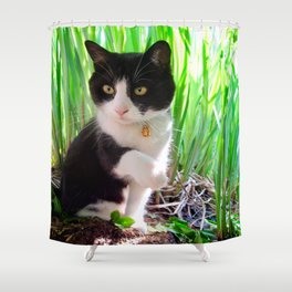 Orazio and the princess frog Shower Curtain