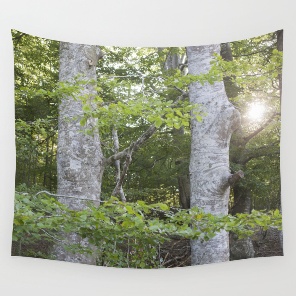Two Trees In The Forest Wall Tapestry by Carmenravago TPS4222386