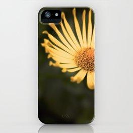 Bright Eyes iPhone Case