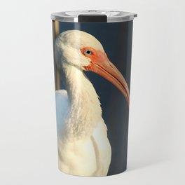 American Ibis Travel Mug