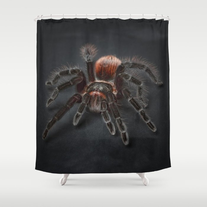 The Scary Spider Shower Curtain By Newdesigns